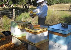 Matt working Hive 3